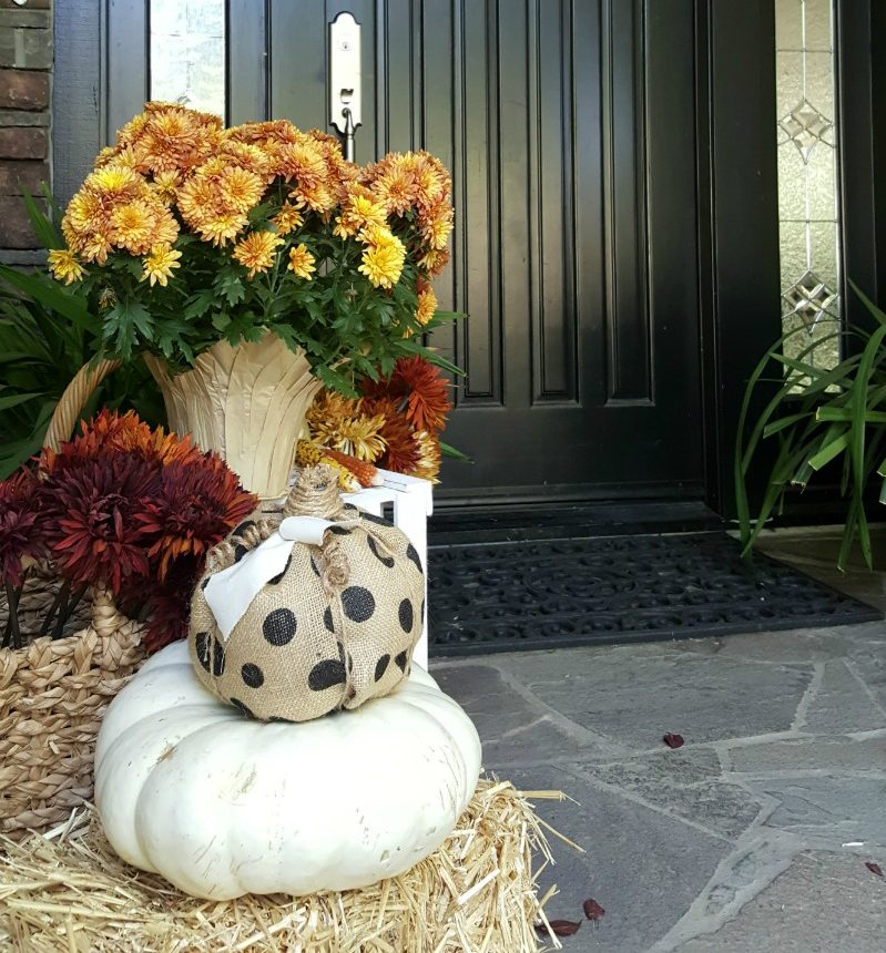 fall front door with mums and pumpkins