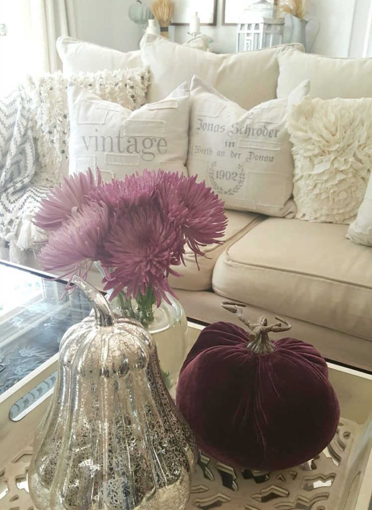 fall coffee table styled with purple mums and velvet pumpkin