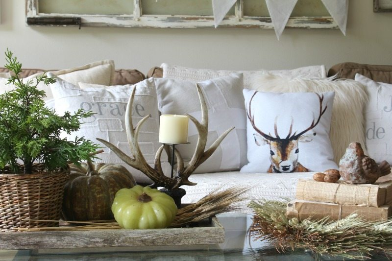 coffee table fall theme with antlers and reclaimed wood tray
