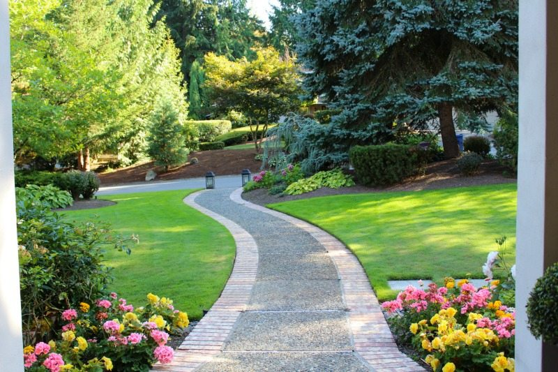 Lush Landscape Fairy Tale Walkway with lawn and trees