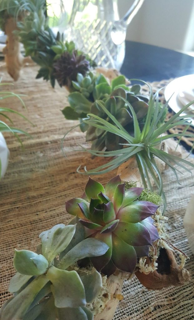 Create succulent planter with easy DIY tutorial