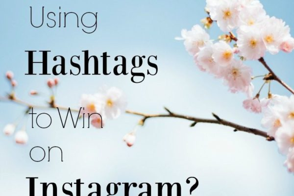 Utilize the power of hashtags on Instagram to grow
