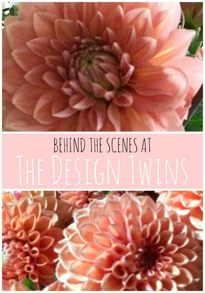 Behind the Scenes at The Design Twins pin
