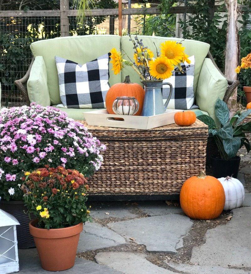 outdoor seating with pumpkins and flowers