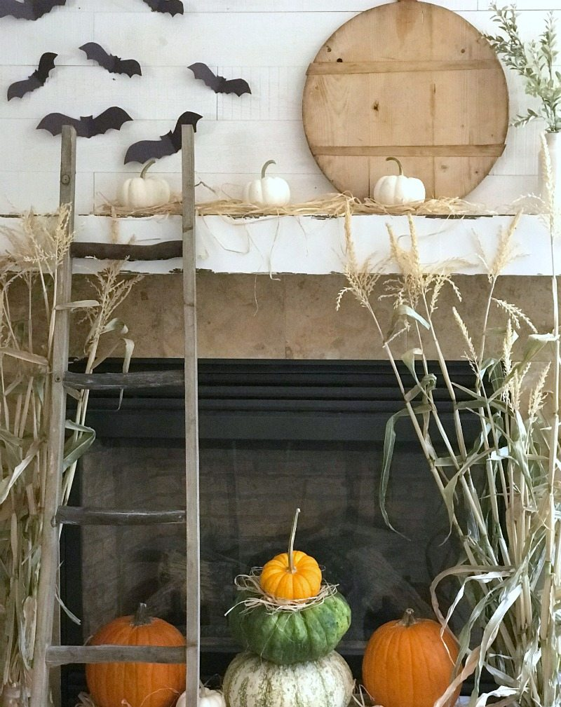 fall decor with paper bats makes the perfect activity for kids
