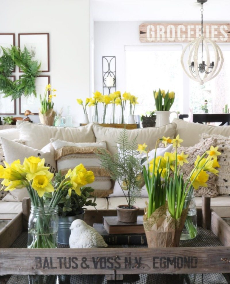 yellow daffodils are the perfect addition