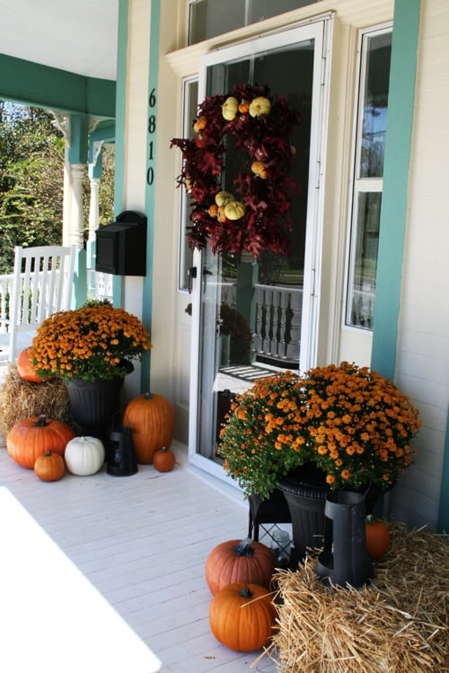 fall front porch with orange mums and pumpkins