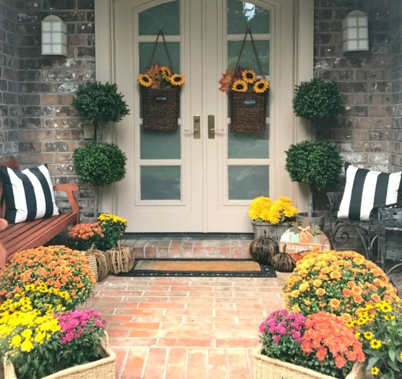 colorful fall mums with hanging door baskets and wicker pumpkins