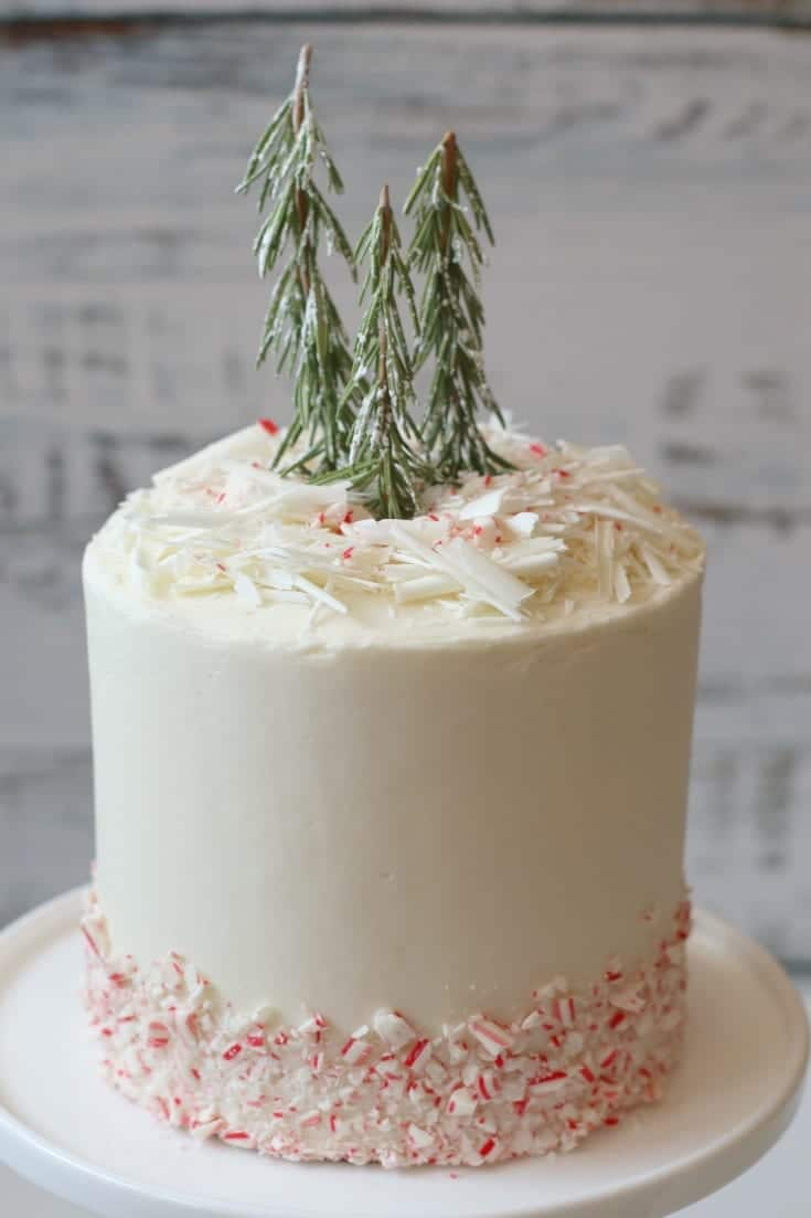 white peppermint chocolate cake with evergreen trees