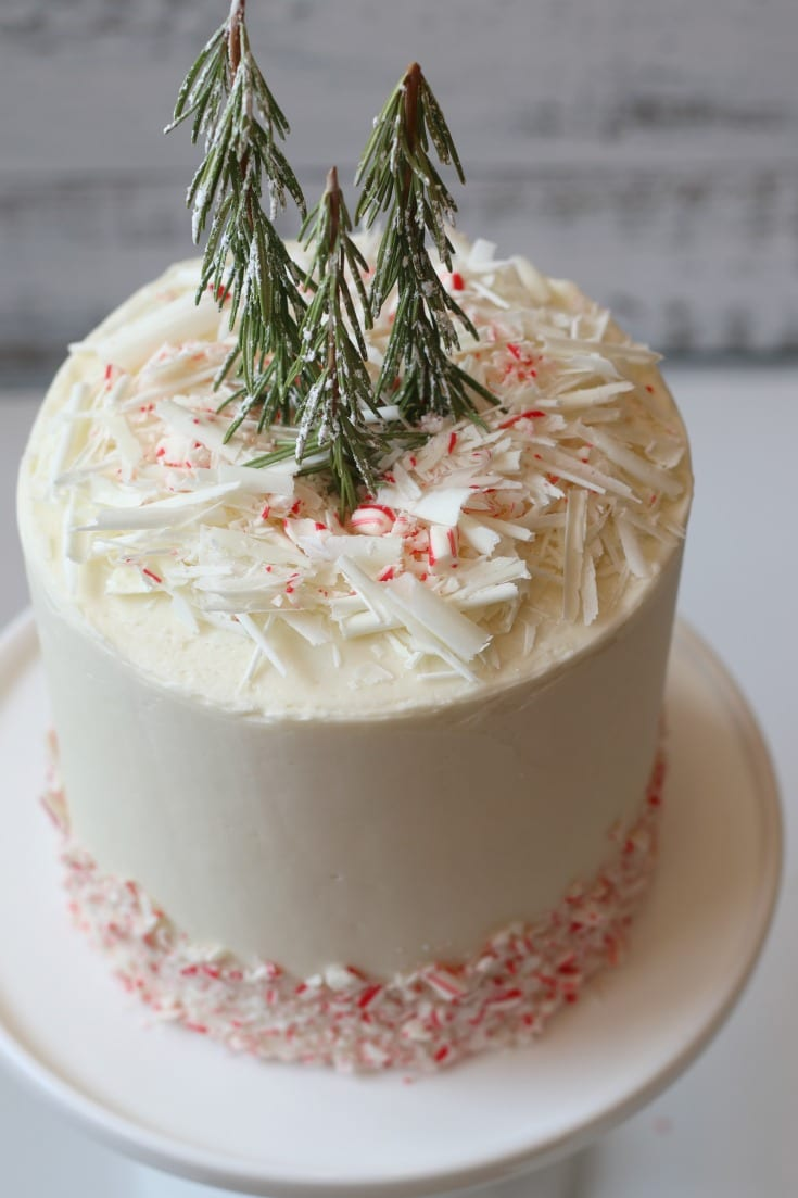 gorgeous holiday red and white cake