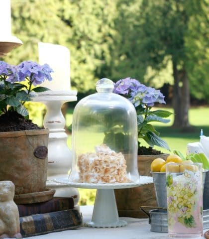 Outdoor Celebration table decor
