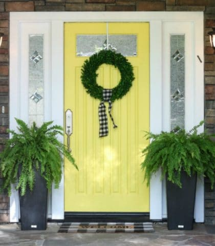 Best tips for painting plus step by step process for how to repaint your front door. How to choose colors, what paint to use. All your questions answered! #frontdoor #springdecor #yellowdoor #curbappeal #doorcolors #paintingadvice #thedesigntwins #paintingexpert #exteriordecor #ferns