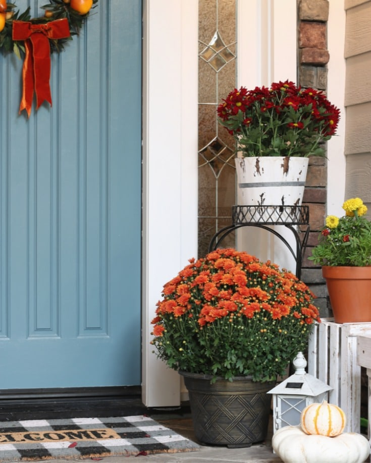 Best tips for painting plus step by step process for how to repaint your front door. How to choose colors, what paint to use. All your questions answered! And tips to creating your best fall decor.