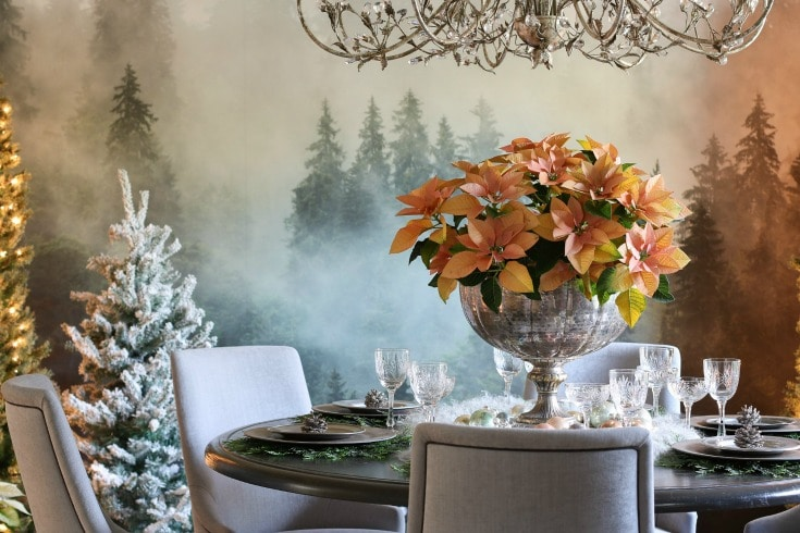 elegant dining room table with vintage silver vase filled with poinsettias crystal chandelier and misty forest backdrop