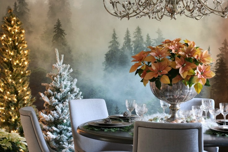 elegant round dining room table with forest wallpaper Christmas trees and poinsettia centerpiece