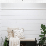 shiplap walls with farmhouse accents and cute dog in front