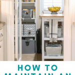 organized walk in pantry with containers