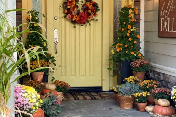 Gold painted front door with mums and flowers decorated for fall