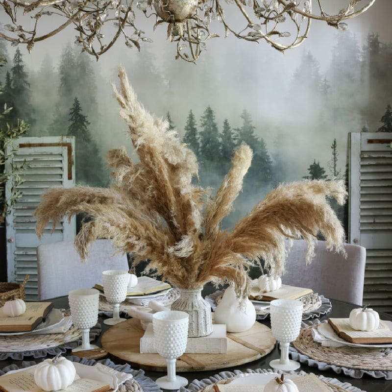 How to Unlock the Fabulous Secrets of Pampas Grass to Decorate your Home